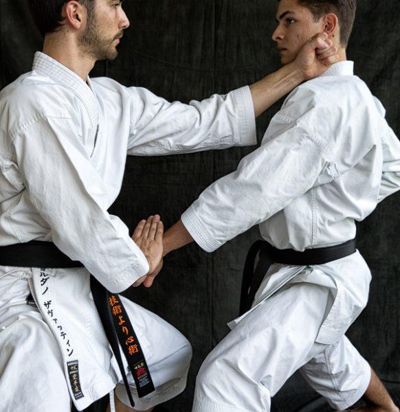 Karate-100