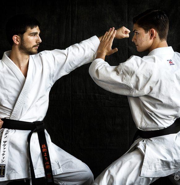 Karate-102