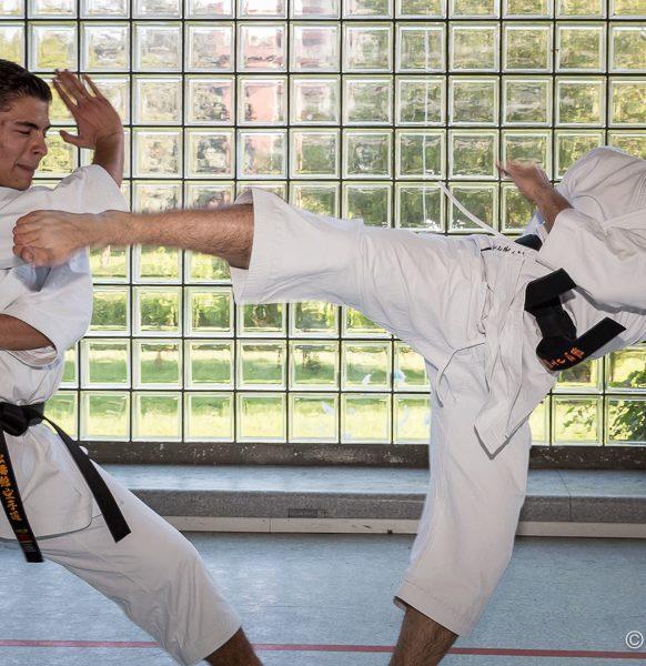 Karate-103