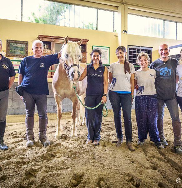 Riab_Equestre-107